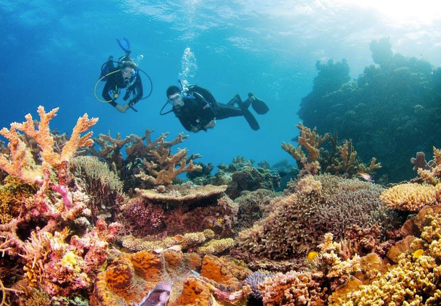 Buceo en la Gran Barrera de Coral