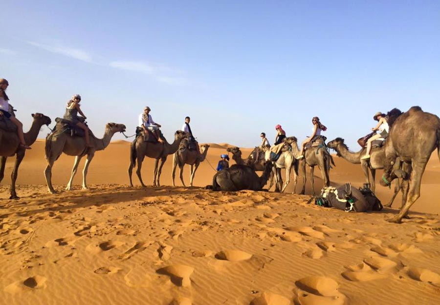 Paseo en camello por el desierto de Marruecos